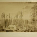 The Mammoth Tree Grove / The Hotel, Thomas Almond Ayres, charcoal, 1855 (C001521)
